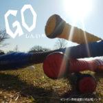 ピンポン野球連盟公式応援ソング『GO』